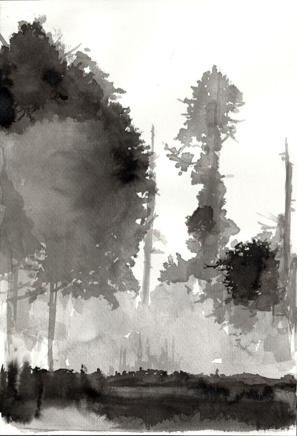 3+Los+árboles+brotaron+prematuramente